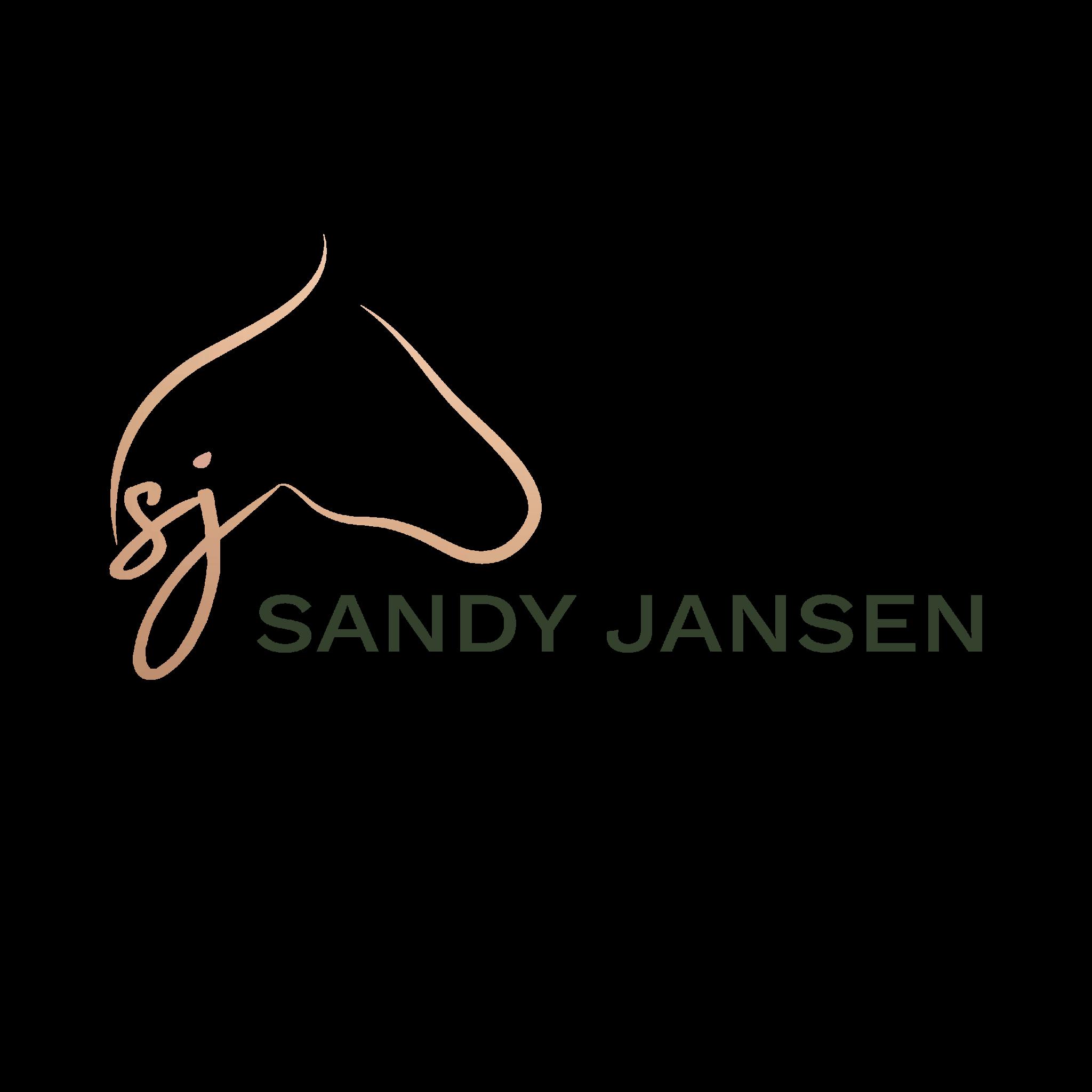 Sandy Jansen